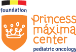 foundation.prinsesmaximacentrum.be Logo